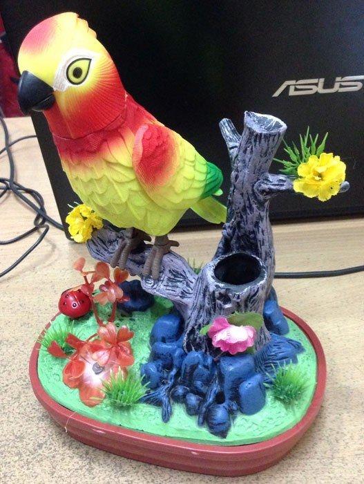 Joyous Bird