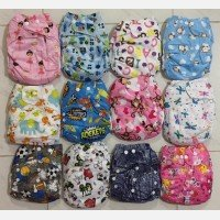Cloth Diapers / Clodi Bizy Bee