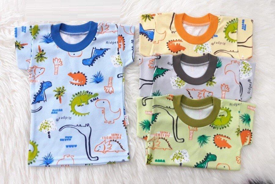 Baju Atasan Kaos Anak Ridges Dino Land XL 20100040