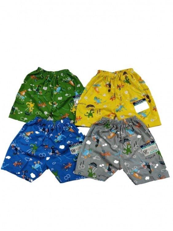 Celana Pendek Anak Ridges Dino Parasut L 20110043