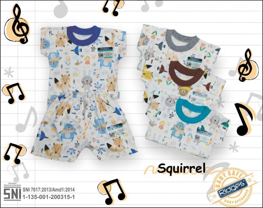 Baju Setelan Kaos Anak Ridges Squirrel L 21020057