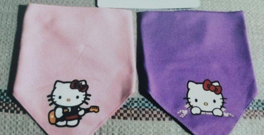 Slaber Segitiga 2pcs Hello Kitty Baby Grow 21020113